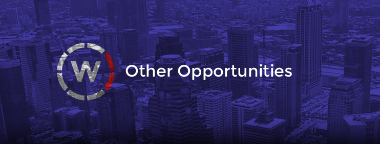 Other. WallCrete, Opportunities